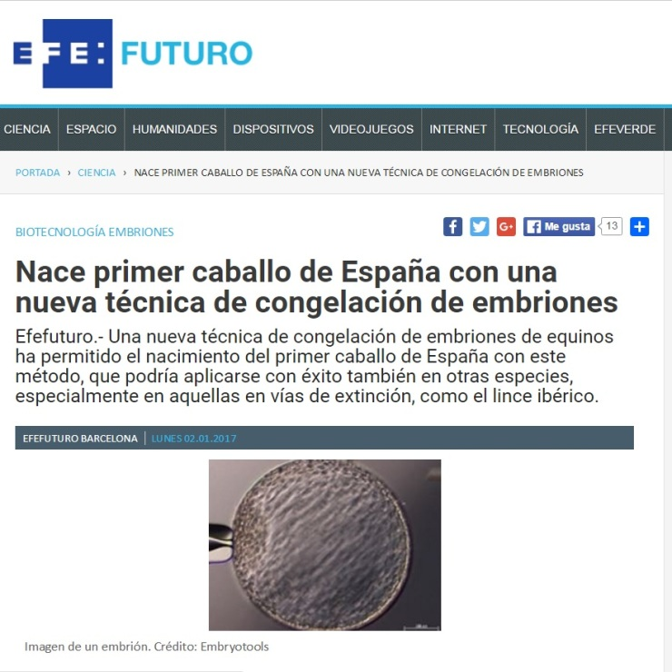 embryotools-efe